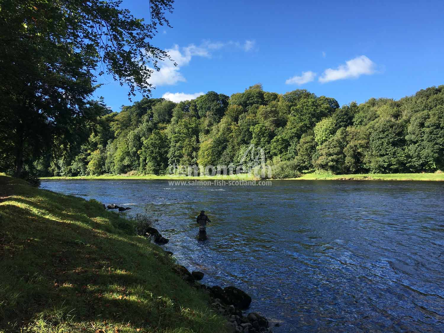 Pitlochrie Beat River Tay 2
