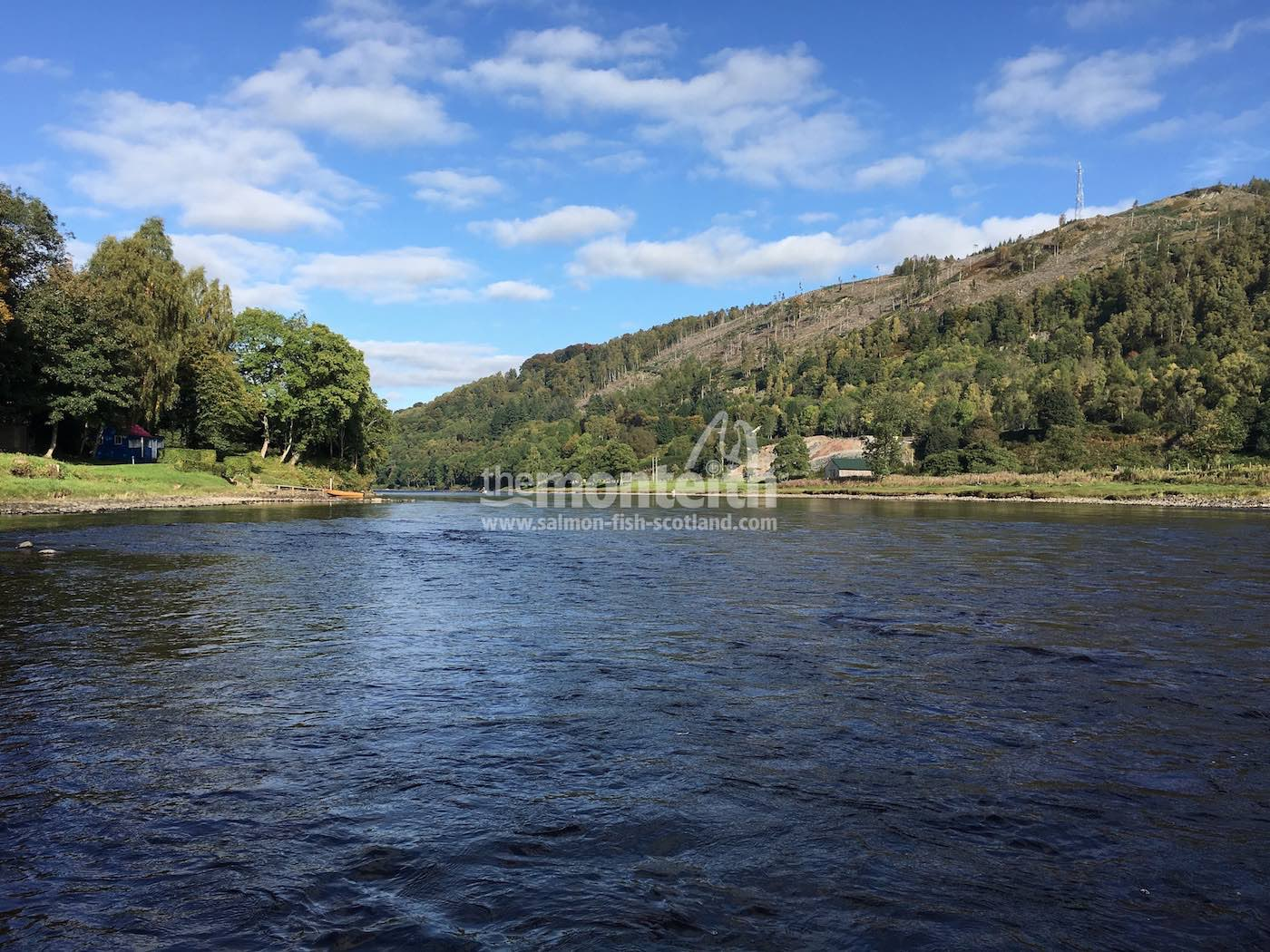 Newtyle Beat River Tay 13