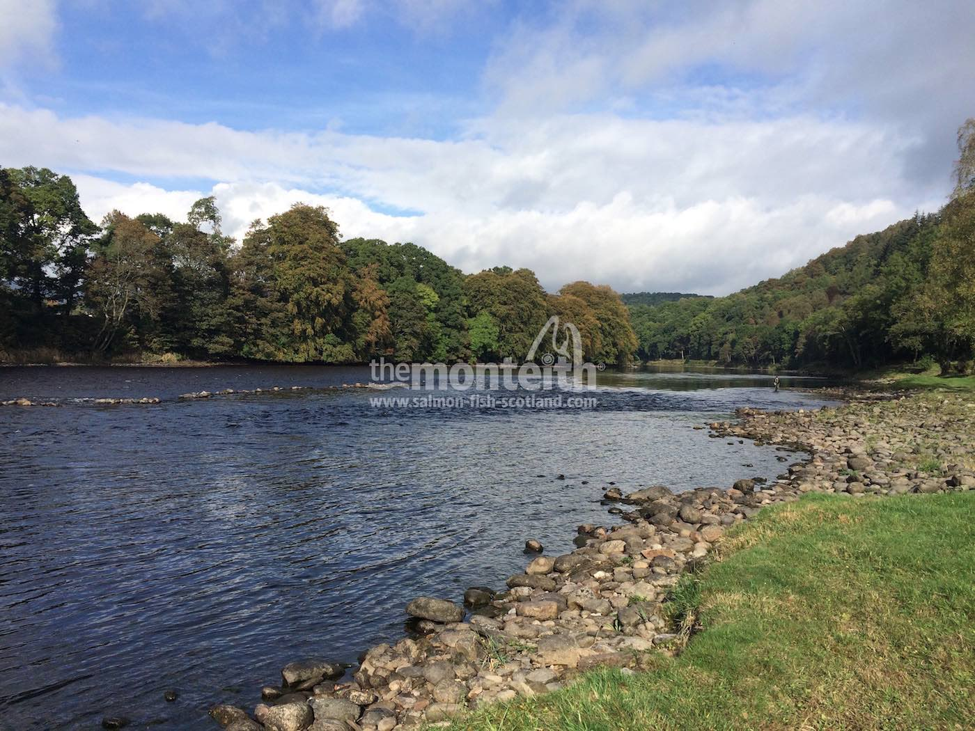 Newtyle Beat River Tay 14