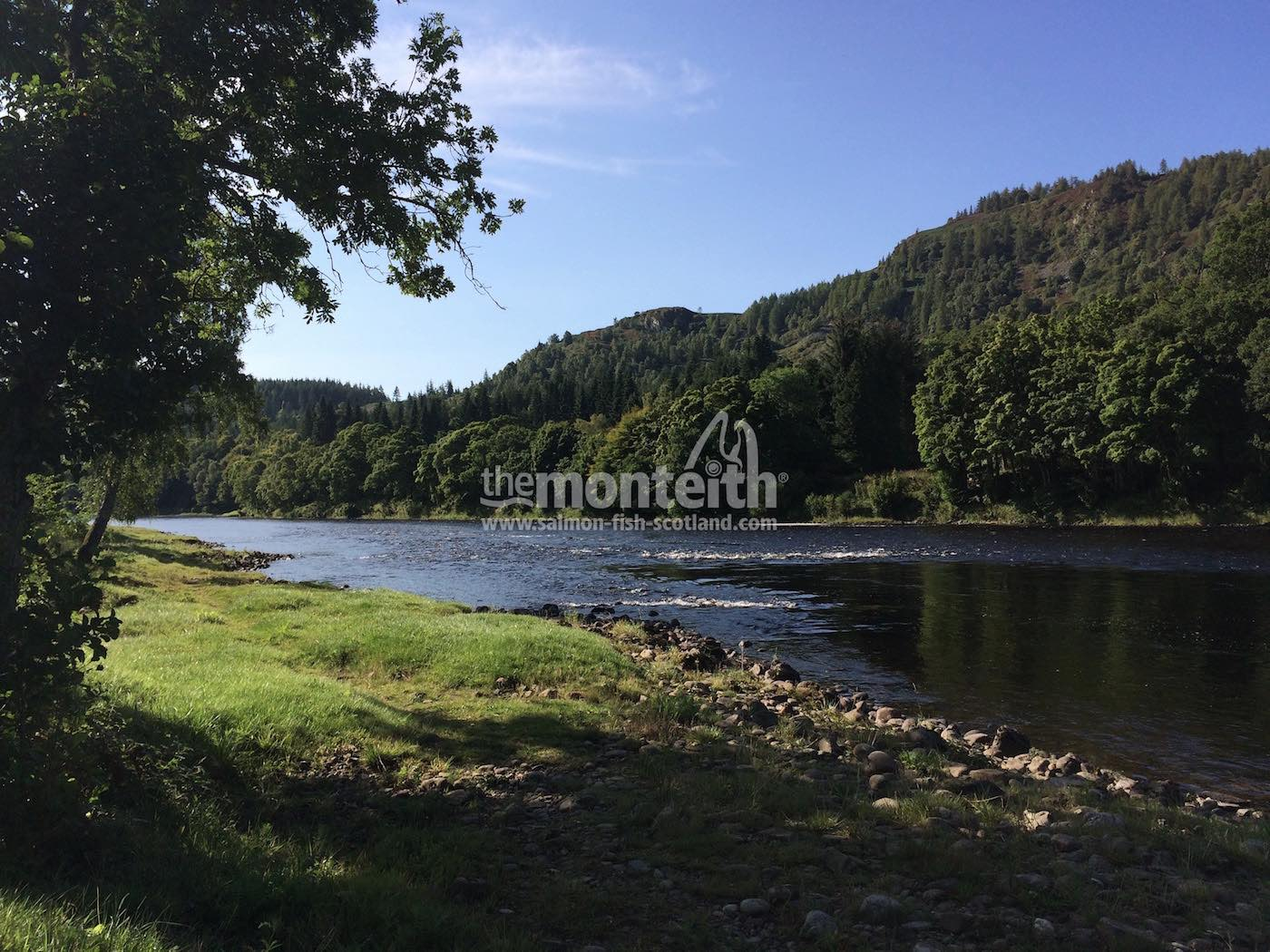 Newtyle Beat River Tay 16