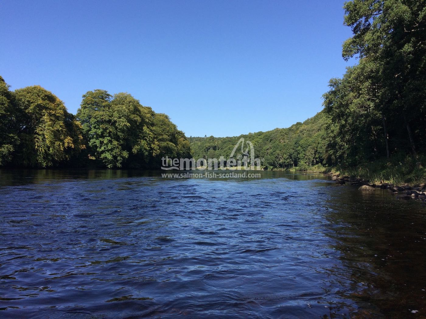 Newtyle Beat River Tay 21