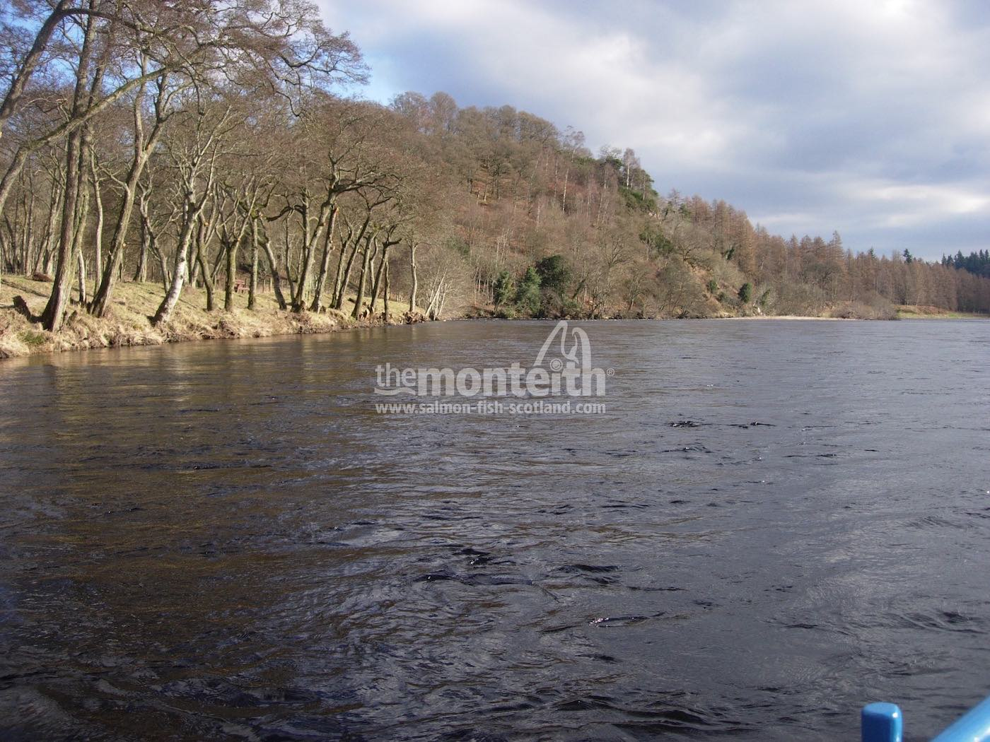 Newtyle Beat River Tay 22