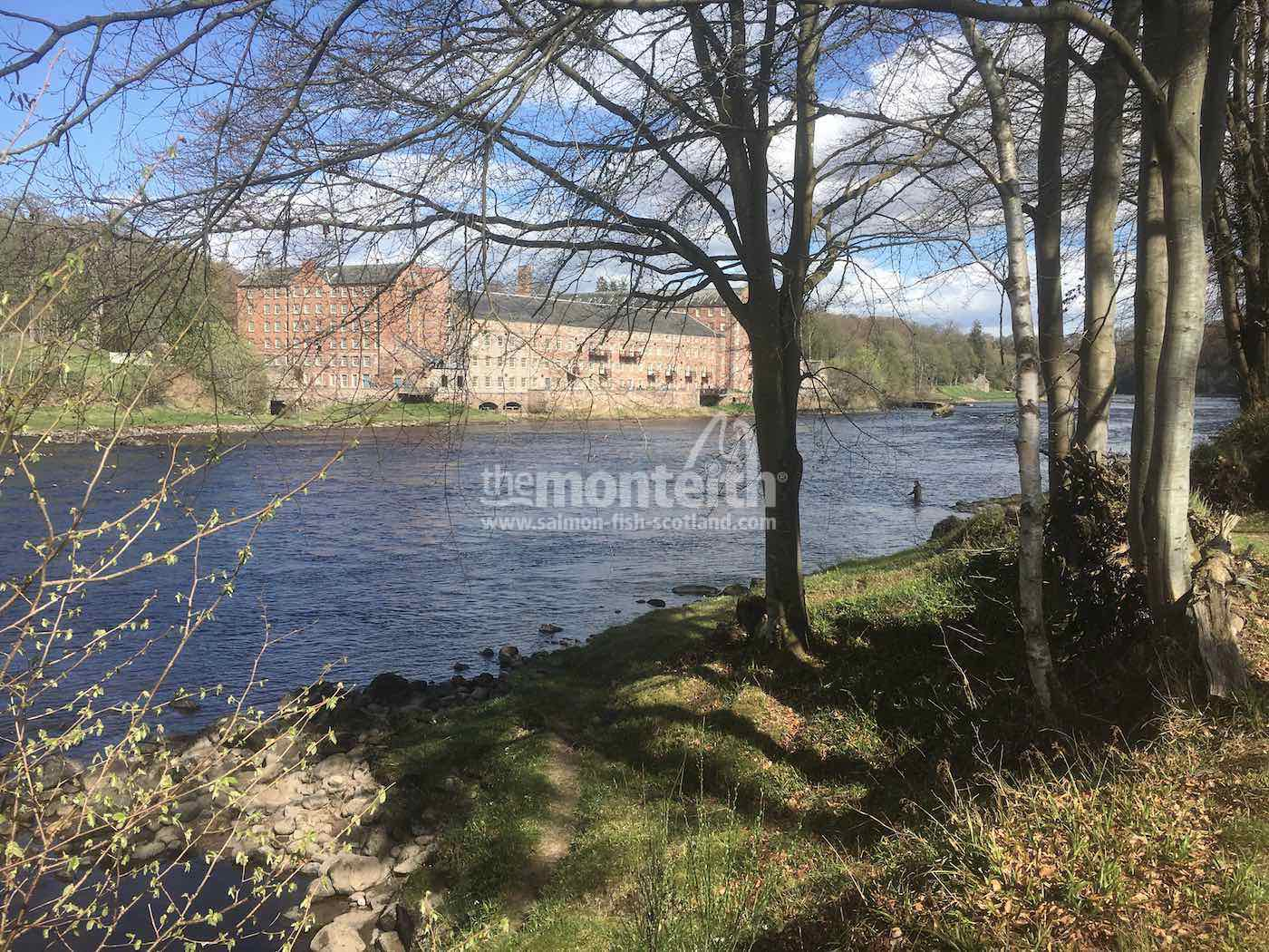Pitlochrie Beat River Tay 31