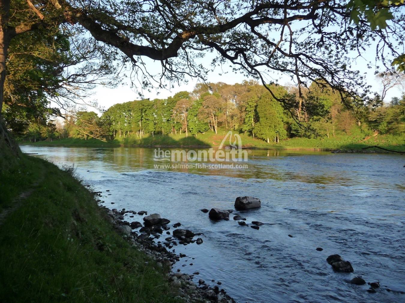 Islamouth Beat River Tay 9