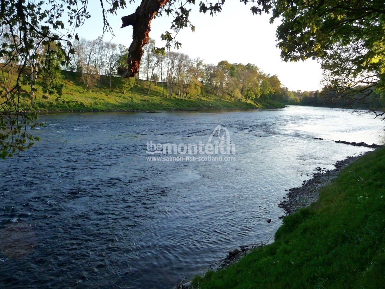 Islamouth Beat River Tay 10