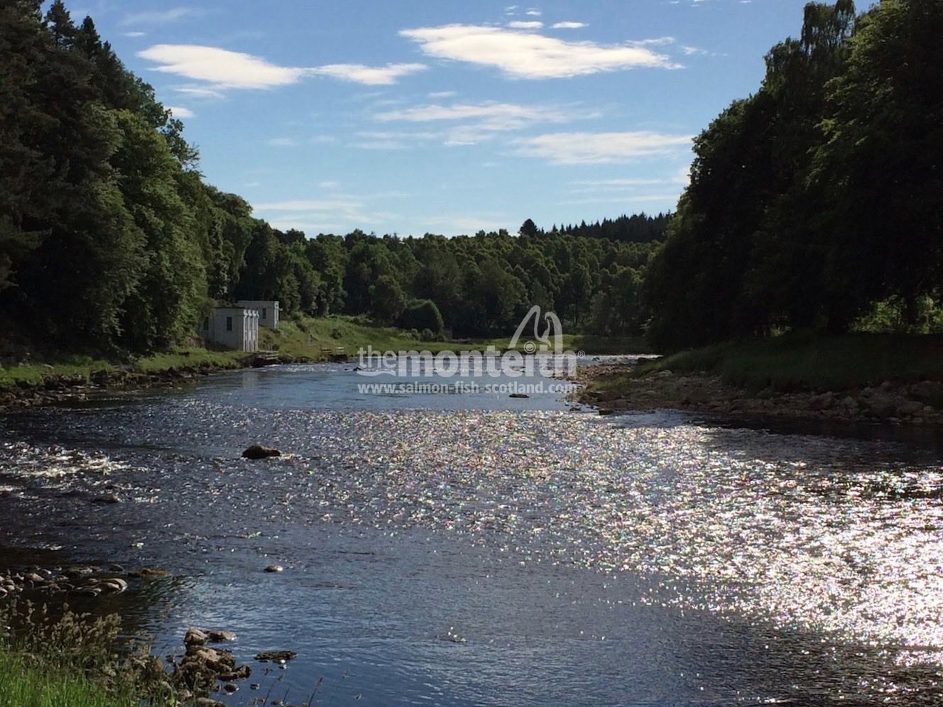 L Woodend River Dee 5