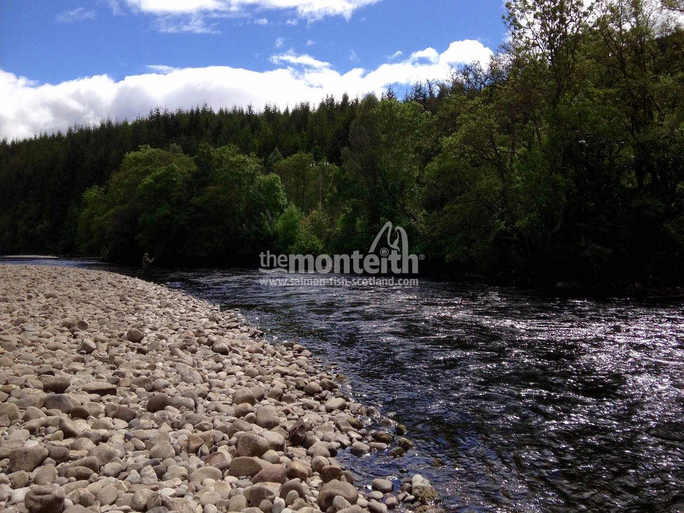 Lower Tummel  19