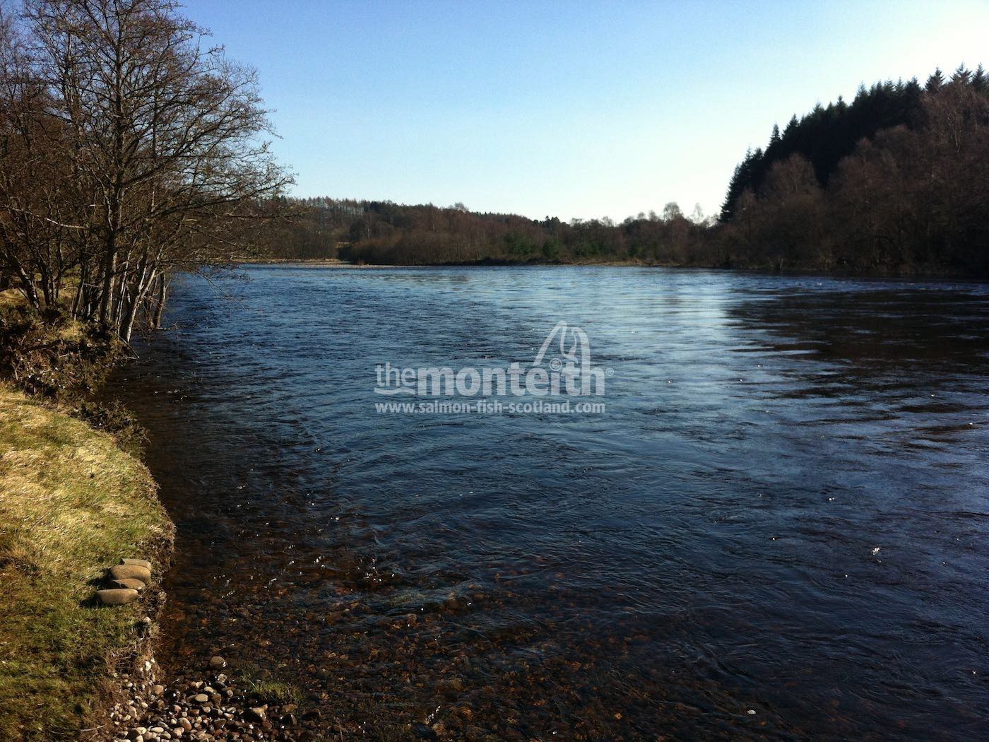 Lower Tummel 31