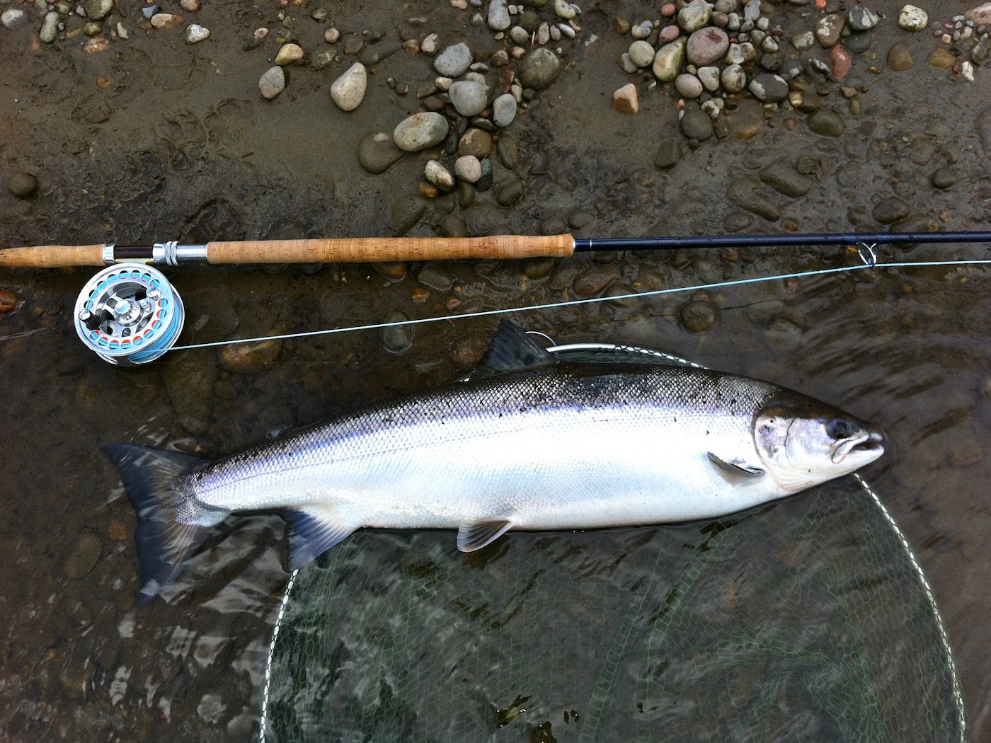 News and tips from Scotlands foremost Fishing Website