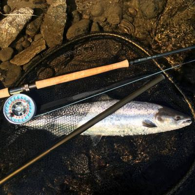 Salmon Fishing Guides Scotland