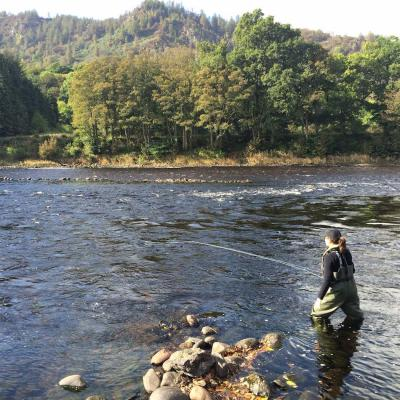 Scottish Salmon Management