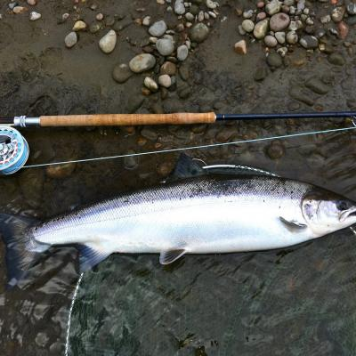 Salmon Fishing & Spey Casting Tuition