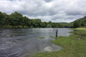 Newtyle Beat River Tay 6