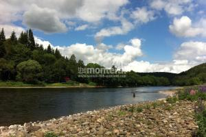 Newtyle Beat River Tay 7