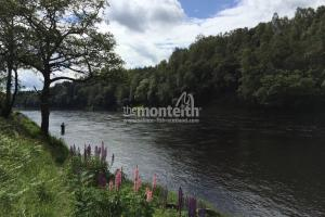 Newtyle Beat River Tay 17