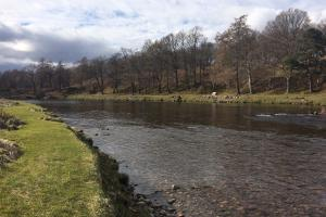 Invery Beat River Dee 21